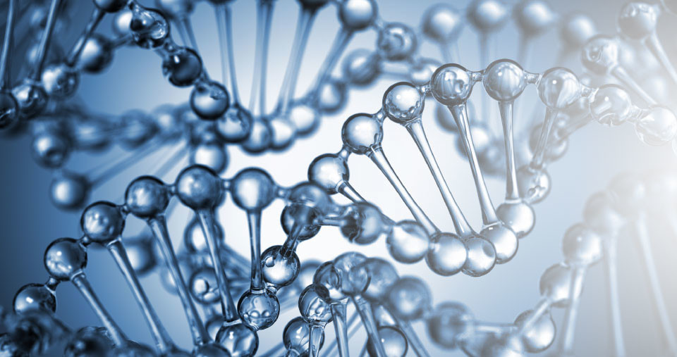 home-header-dna_01